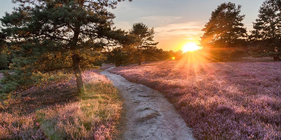 Wetter Klima Und Beste Reisezeit Lüneburger Heide Wettercom