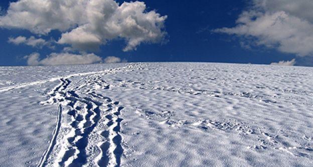 Schnee Spuren Pixabay