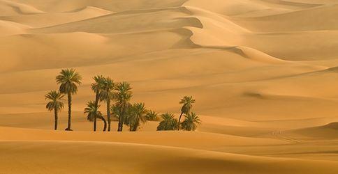 Sanddünen in der Sahara