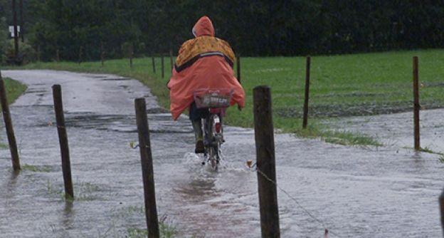 Überschwemmung, Regen (dapd)