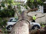 Unwetter-Schäden schnell der Versicherung melden