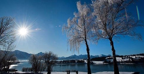 Wintersonne am See