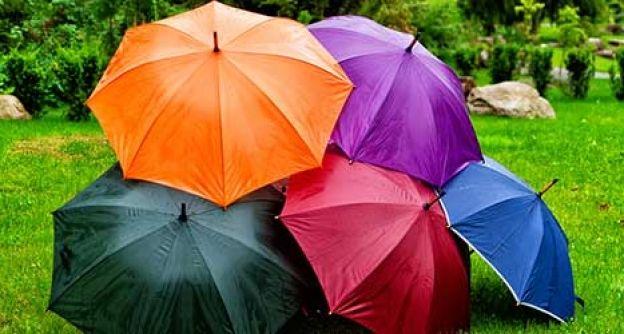 Buter Regenschirme stehen auf einer Wiese