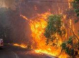 Deutsche Opfer bei Buschbränden in Westaustralien?