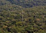 Weltweit höchster Klima-Messturm wird eröffnet