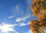 Altweibersommer läuft aus, goldener Oktober wird draus