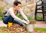Sieben Aufgaben für den Hobbygärtner