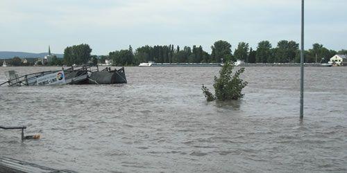 Hochwasser in Mainz vom 2.06.2013