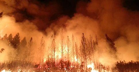 Brände im Yosemite N.P. (HO/US FOREST SERVICE/AFP)