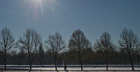 Schnee, Sonne, dapd, Oberschleissheim