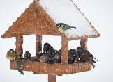 Einfache Winterhilfen für Vögel