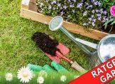 Gartenarbeit im Mai: Das ist zu tun
