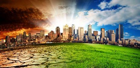 Trockene Äcker und Tigermücke: Das bringt der Klimawandel