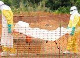 Mehr als 10.000 Malaria-Tote durch Ebola