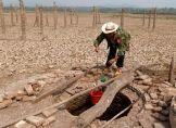 Dürre in Thailand trifft tausende Dörfer