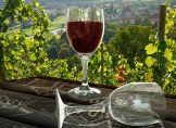 Wein wird künftig anders schmecken