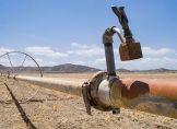 Keine Entspannung für Dürreperiode in Kalifornien