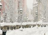 Die Bestimmung der Schneefallgrenze