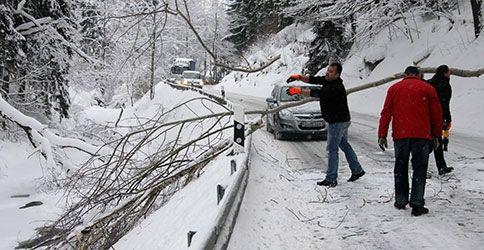 Autos im Schnee