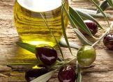 Anhaltende Trockenheit gefährdet Oliven-Ernte