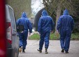 Vogelgrippe! 43.000 Tiere gekeult