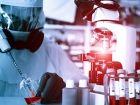 Neuer Millionen-Betrag für Ebola-Forschung