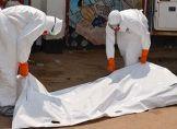 Ebola-Krise: USA entsenden Soldaten