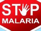 Erster Malaria-Impfstoff nimmt wichtige Hürde