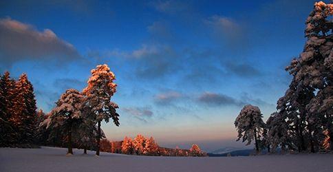 Schweiz, Schnee, Abend, Winter