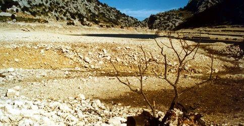 Dürre auf Mallorca
