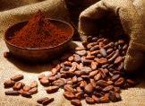 Kakaotrunk hilft gegen Vergesslichkeit