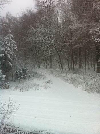 Schnee in der Lüneburger Heide