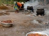 Palmöl-Importeure achten stärker auf Umweltstandards
