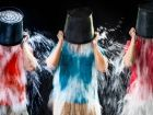 "Spendenflut durch ""Ice Bucket Challenge"""