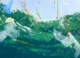 Plastiktüten verschmutzen die Weltmeere