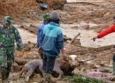 Erdrutsch in Indonesien: 17 Leichen geborgen