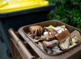 Enorme Lebensmittel-Verschwendung schädigt Klima
