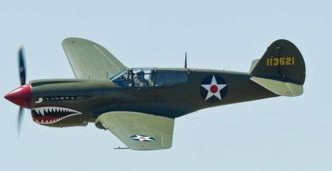 Kittyhawk P-40 (Bild: Lukich / Shutterstock.com)