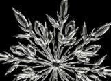 Weiße Pracht: Wissenswertes über Schnee